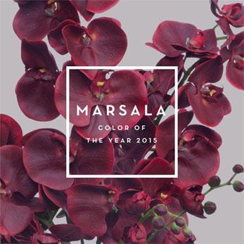 MARSALA04_01A
