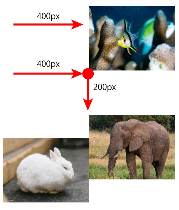 魚と象の移動の画像